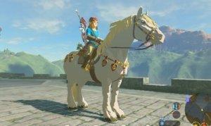 【ゼルダの伝説 BtW】ゼルダの馬神様って何処に居るの?馬ってワープにはついて来れないの?