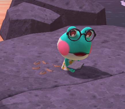 【どうぶつの森】レイニーかわいい!丸眼鏡にしてほしい